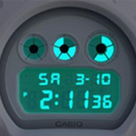 CASIO DW-6900WW-702